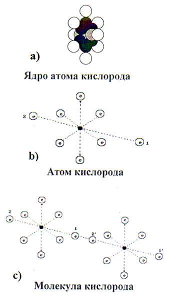 Схемы ядра и атома кислорода.
